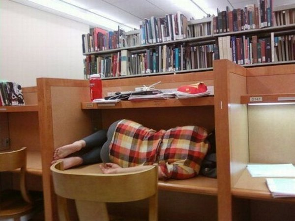 http-wackymania.comsleeping-in-the-library
