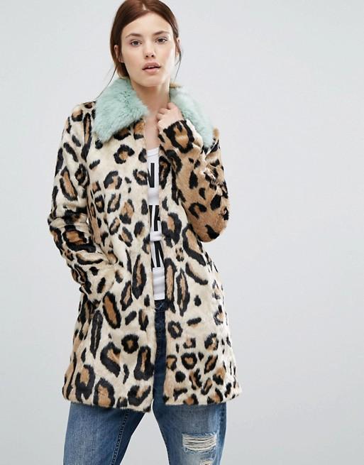 7011034-1-leopard